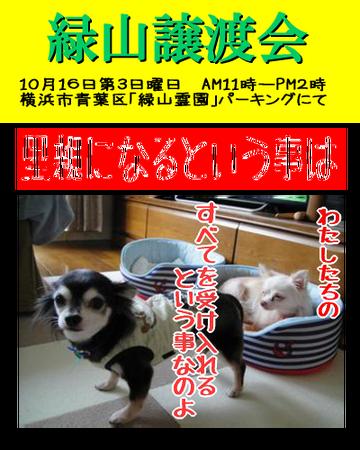 midoriyama20161016